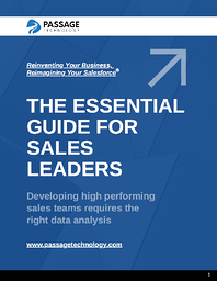 The Essential Guide for Sales Leaders e-Book Cover