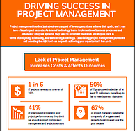 Driving Success in Project Management
