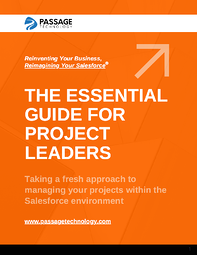 The Essential Guide for Project Leaders e-Book Cover