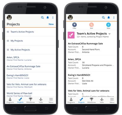 Salesforce-mobile-app-nav-menu-1