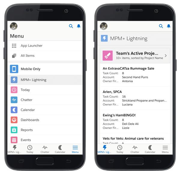 Salesforce project management app Milestones PM+ on Salesforce mobile app navigation menu