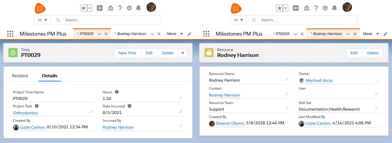 Time entry Salesforce app Milestones PM+, project task management